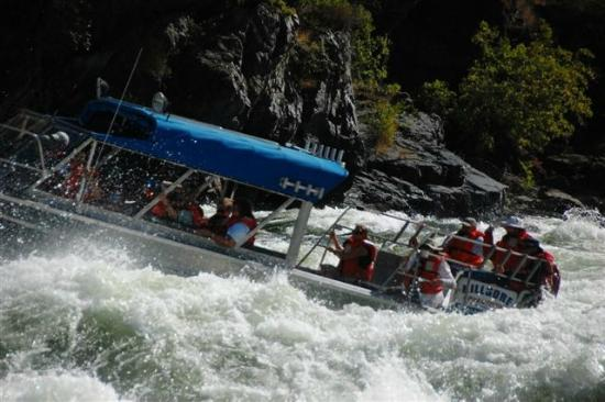 Killgore Adventures Hells Canyon Jet Boat Trips & Fishing Trips: Courtesy of Bob again!