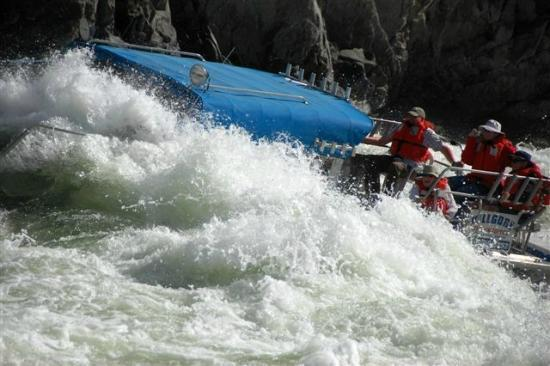 Killgore Adventures Hells Canyon Jet Boat Trips & Fishing Trips: Courtesy of Bob!