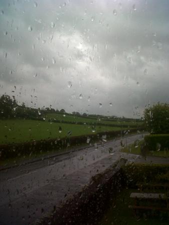 The Felin Fach Griffin: view from the bedroom window shame it was raining