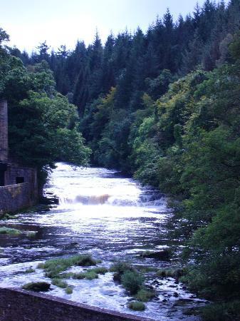Falls of Clyde kurz vor New Lanark