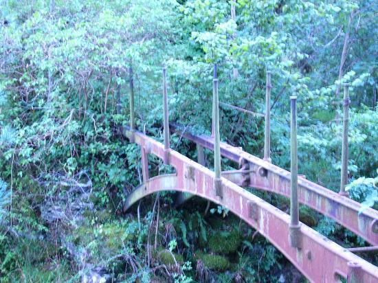 Rostige Brücke über die Falls of Clyde
