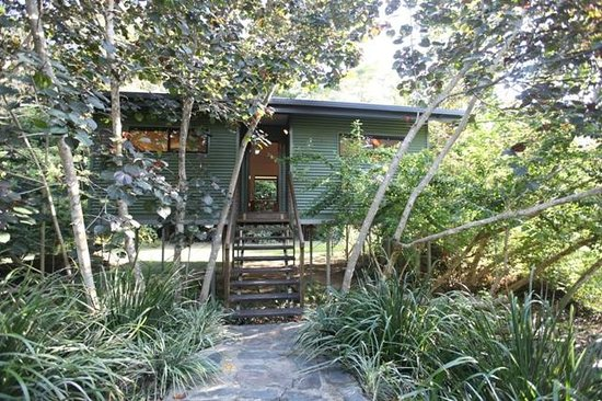 TreeHouse Retreat BnB: Welcome to TreeHouse