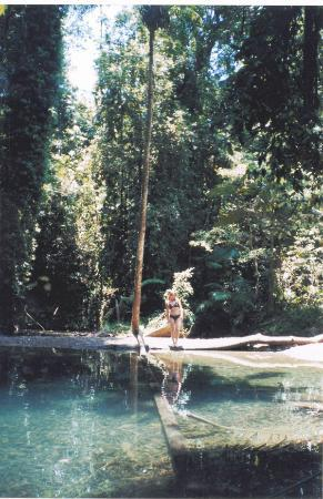TreeHouse Retreat BnB: Local fresh water swimming hole