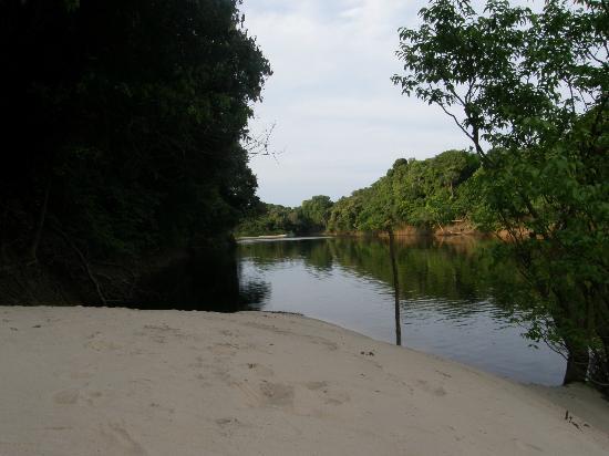 Arquipelago de Anavilhanas: Praia em Anavilhanas