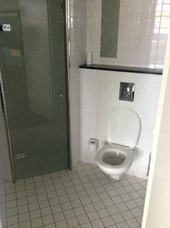 Hotel Hedegaarden: Bathroom