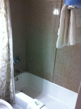 The Seahawk: Shower/tub