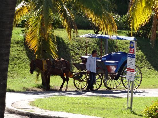 """Paradisus Rio de Oro Resort & Spa: """"Cuban taxi"""""""