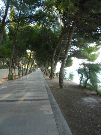 Bluesun Hotel Elaphusa: Die Promenade