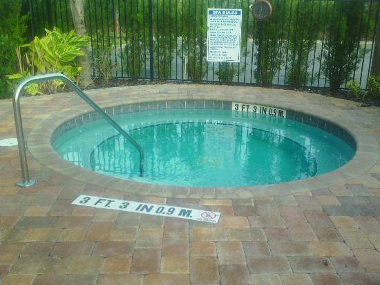 Holiday Inn Express Hotel & Suites Orlando - International Drive : hot tub, never saw anyone in here, except for me..