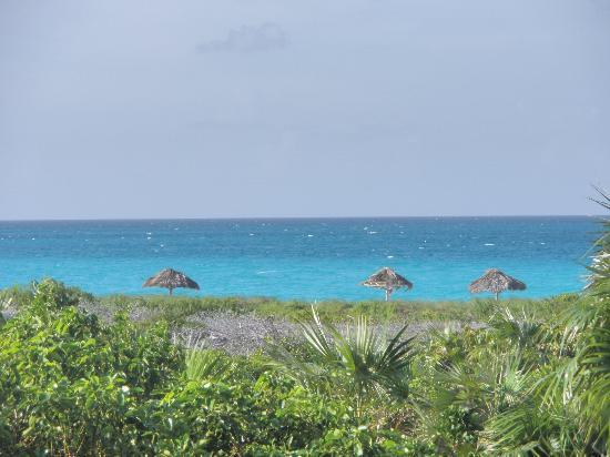 Melia Cayo Santa Maria: View from our 3rd room (very nice, although gardens did look quite wild)