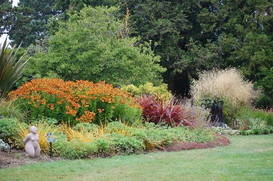 Early Fall In The Perennial Garden Fotograf A De Mendocino Coast Botanical Gardens Fort Bragg