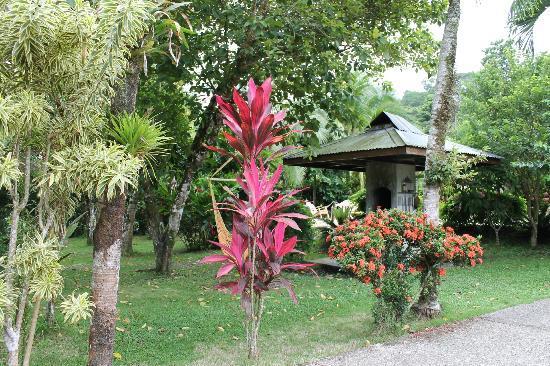 Le Colibri Rouge: hotel jardin