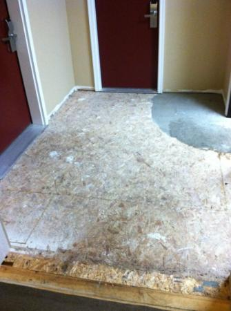 Howard Johnson of Traverse City: the unfinished floor outside our room.