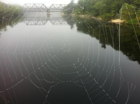 Androscoggin Swinging Bridge: looking at the Black bridge 