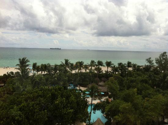 The Palms Hotel & Spa : ROOM VIEW
