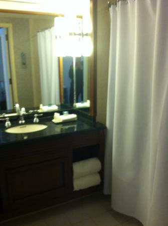 Renaissance Chicago Downtown Hotel: bathroom