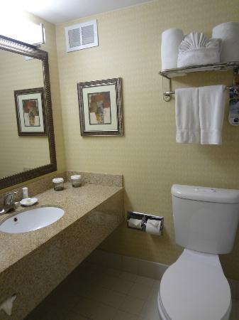 Crowne Plaza Austin: Bathroom