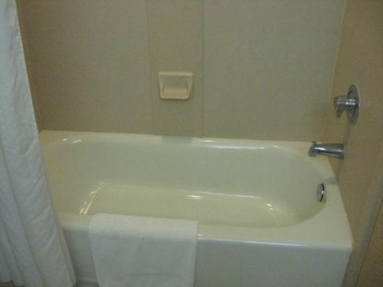 Holiday Inn Express Hotel & Suites St. Petersburg North I-275: bathroom tub