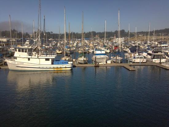 Brewer's on the Bay : View from the restaurant