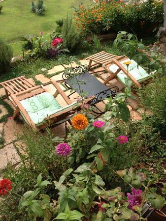 Villa Smodlaka: garden