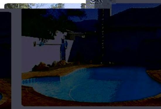 Chesham House B&B: Swimming Pool