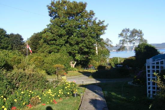 Hedley House: View of Bay of Fundy through the garden and trees