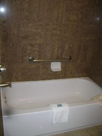 BEST WESTERN PLUS Bradenton Gateway Hotel: Tub/shower