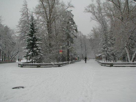 Novosibirsk, Ryssland: центральный парк зимой