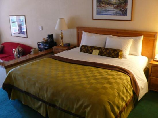 The Pines Resort: nice clean and comfy