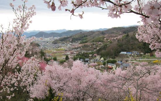 Hanamiyama Park: 花見山公園・・・中腹からの集落の眺め