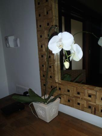 Padma Resort Legian: every room has an ocrhid - which i'm sure i read was what the padma meant