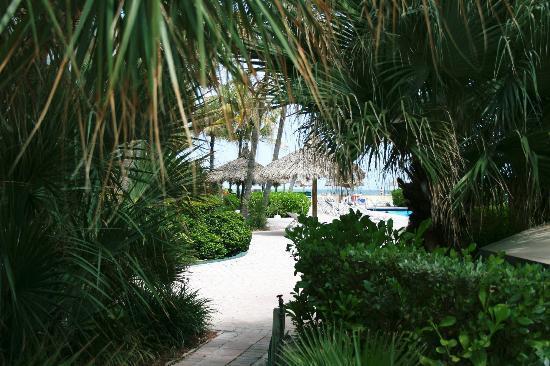 Days Hotel - Thunderbird Beach Resort : Garden area