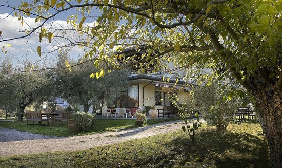 Serrungarina, Italy: Agriturismo con ristorante e fattoria