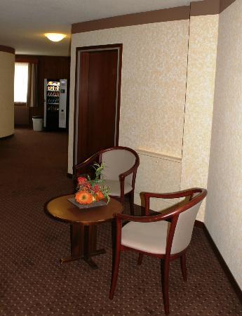 La Porte d'Octodure Hotel : Hall des chambres