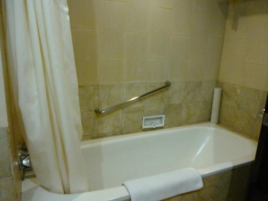 Hotel Santika Premiere Jogja: tub
