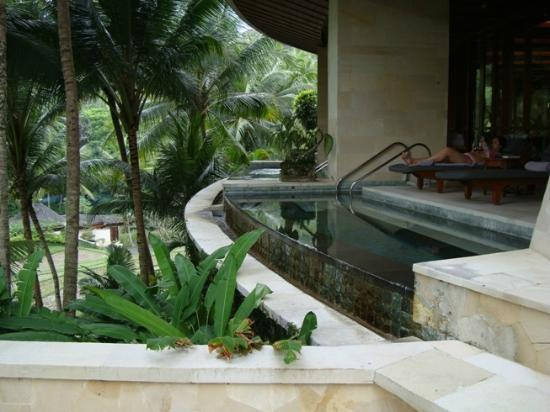 Four Seasons Resort Bali at Sayan: Hot tub outside gym