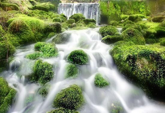 Kilnsey Park: Water gushing from the beautiful Kilnsey spring