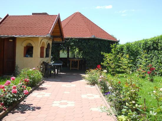 Pensiunea Magnolia Sibiu : summer 2012 -garden