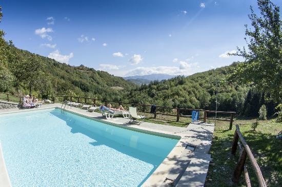 Bio Agriturismo Il Vigno: Il Vigno Pool whit a great view!