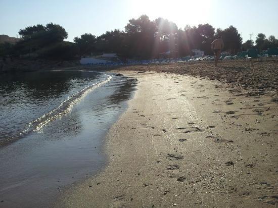Torrent Bay by Intercorp Hotel Group : Spiaggia adiacente alla struttura