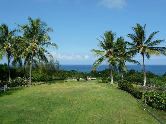Kealakekua Bay Bed & Breakfast: Daytime view from lanai at Kealakekua Bay B & B