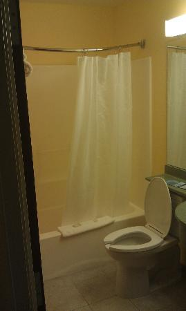 Microtel Inn & Suites by Wyndham York: bathroom