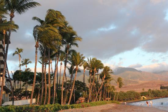 Hyatt Regency Maui Resort and Spa: View from beach towards mountains