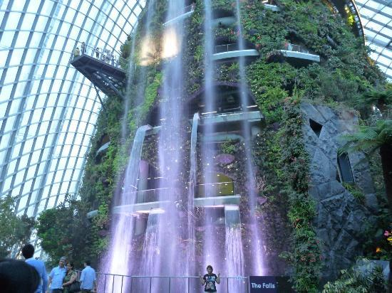 Garden By The Bay Cloud Forest cloud forest - picture of gardensthe bay, singapore - tripadvisor