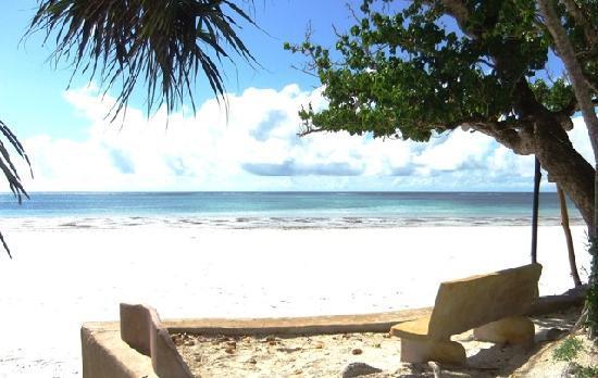 Galu Sea Lodge -Tamani : Beach view seat