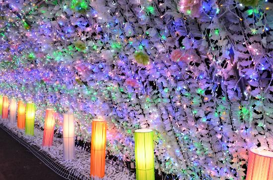 Gotemba Kogen Toki no Sumika: 光のトンネル