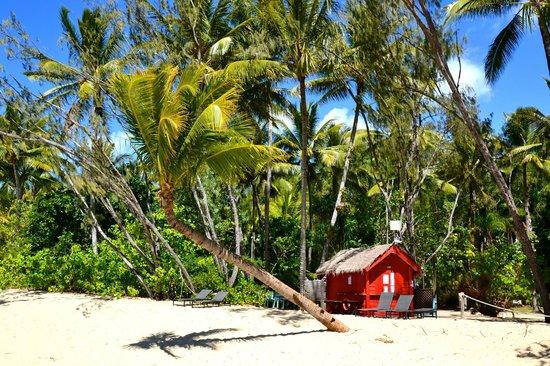 Kewarra Beach Resort & Spa: Bar della spiaggia