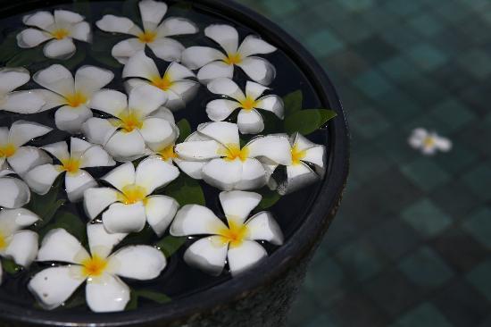 Le Meridien Koh Samui Resort & Spa : Nice Little Touches