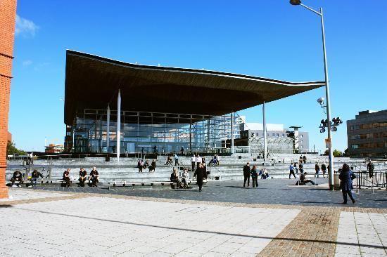 Senedd Cardiff Tour