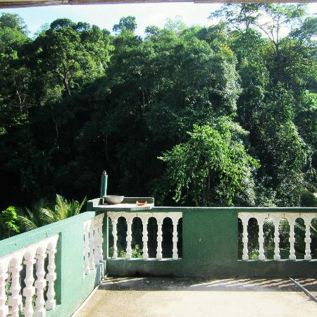 Green Villa Kandy: Rain forest terrace